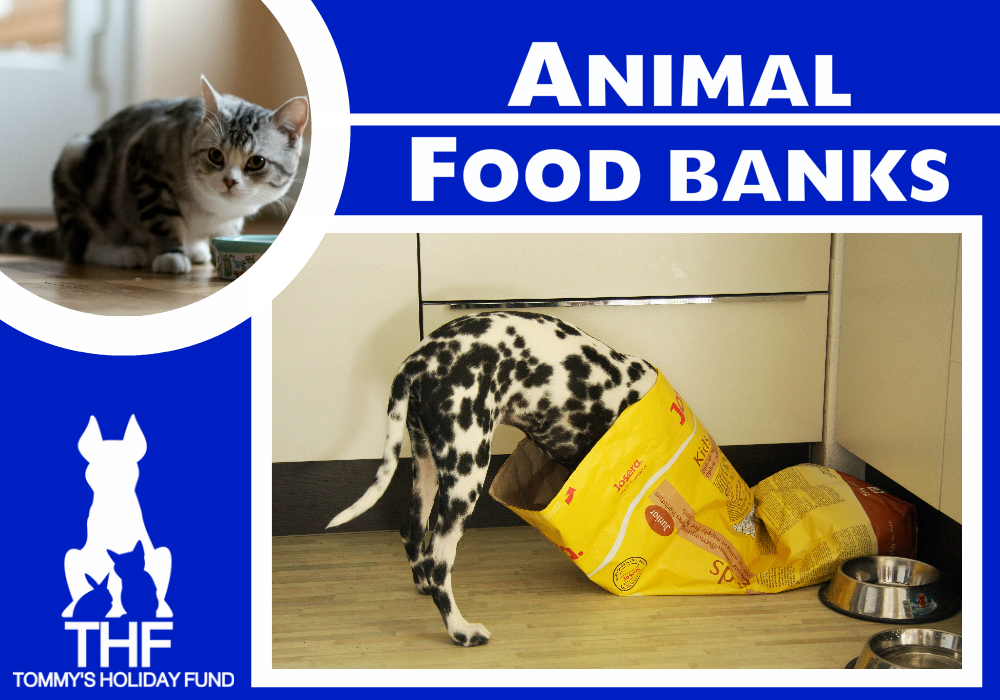 Animal Food banks2 Graphic