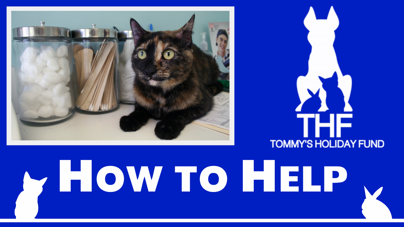 How to Help 2